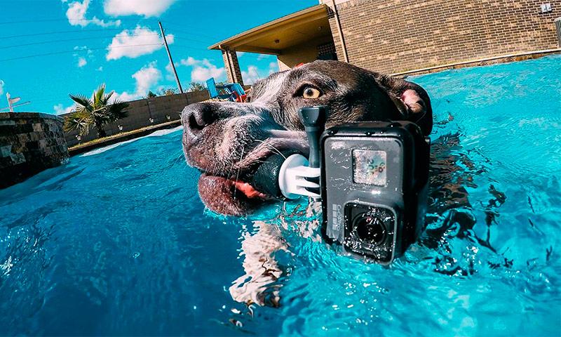 MGA Camera NG Pagkilos